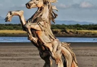 Horse_Wood_cropx385